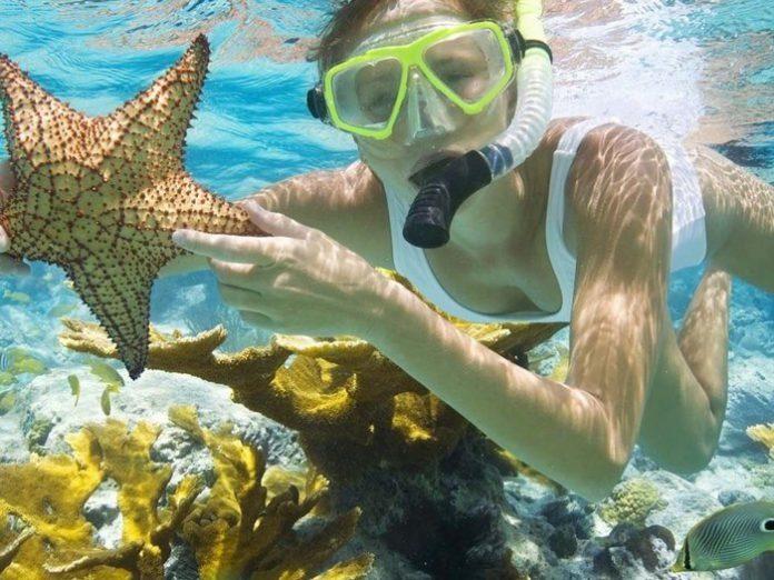 Ngắm san hô Phú Quốc đẹp nhất Việt Nam